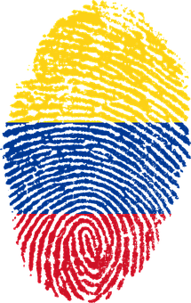 Check customs regulations and gather documents for South America moving